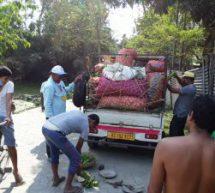 Organic Vegetables – Bharatiya Kisan Sangh's praise worthy initiative