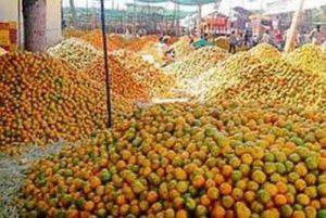किसान रेल – नागपुर से संतरे लेकर दिल्ली के लिए चली किसान ट्रेन