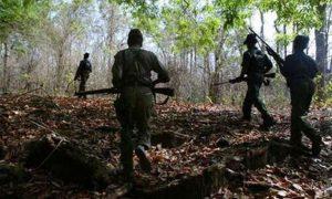 सात नक्सलियों पर हत्या का केस दर्ज, सुरक्षा बलों का क्षेत्र को घेरकर सर्च ऑपरेशन
