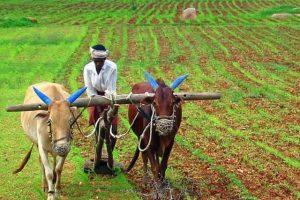 कृषि सुधार कानून के विरोध का औचित्य…??