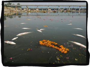 Delhi Government bans idol immersion at public places including Yamuna